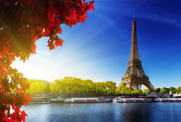 Basically Paris Rail Tour, Sightseeing from London - Tour