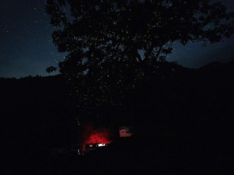Fireflies camping at Camp Hideout - Tour