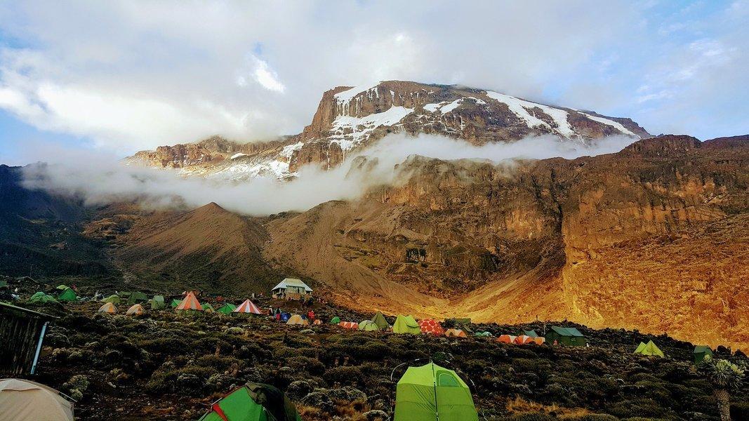 7-Day Kilimanjaro Trek via Umbwe Route - Tour
