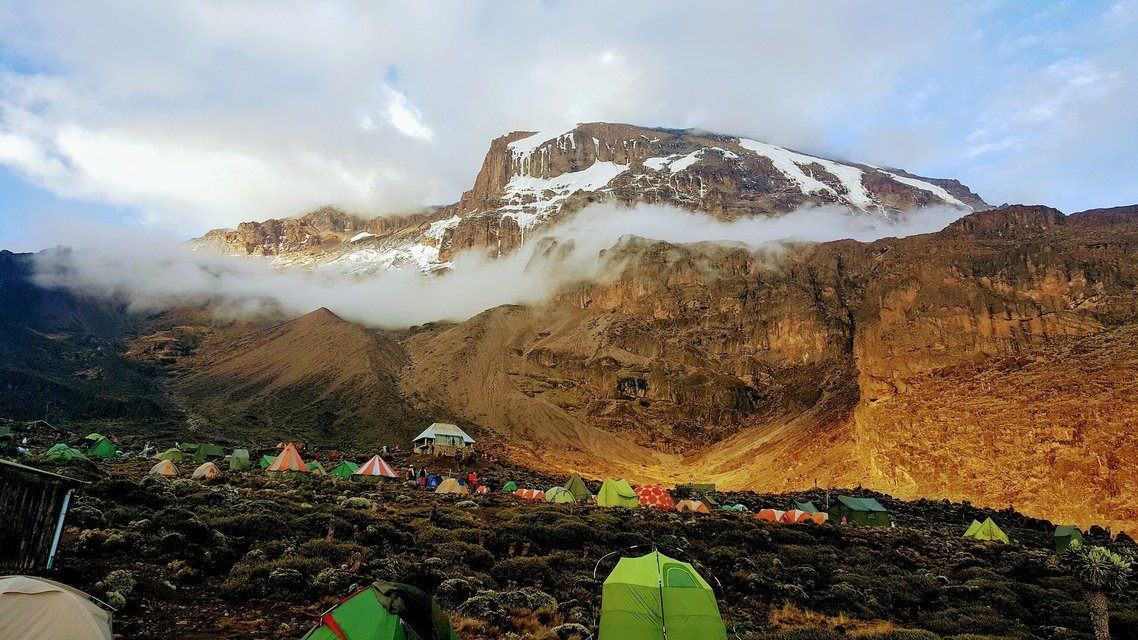 7-Day Kilimanjaro Trek via Umbwe Route - Tour
