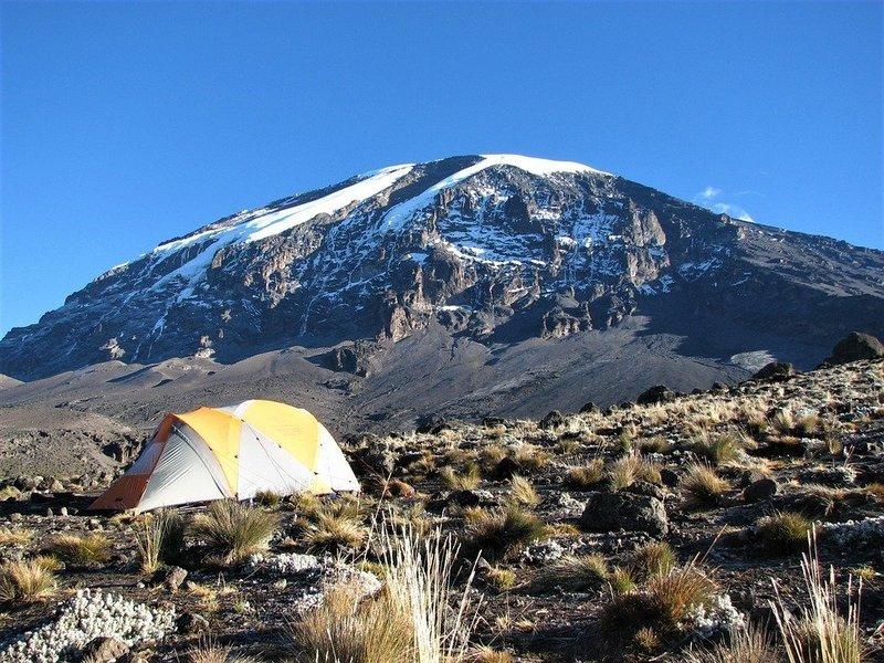 Mount Kilimanjaro Day Trip Trekking from Arusha or Moshi. - Tour
