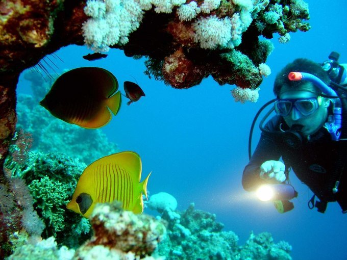 Scuba Diving in Goa at Grand Island - Tour