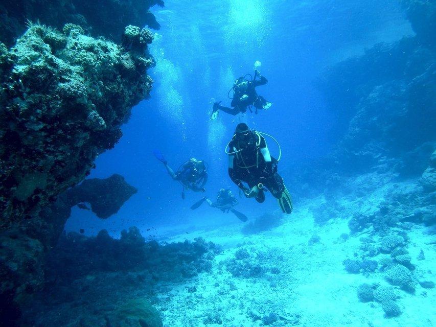 Scuba Diving - Tour