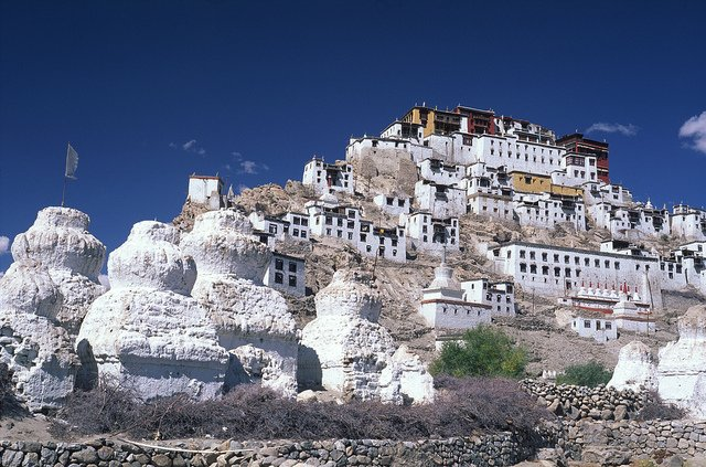 Amazing LADAKH Tour with Pangong - Tour