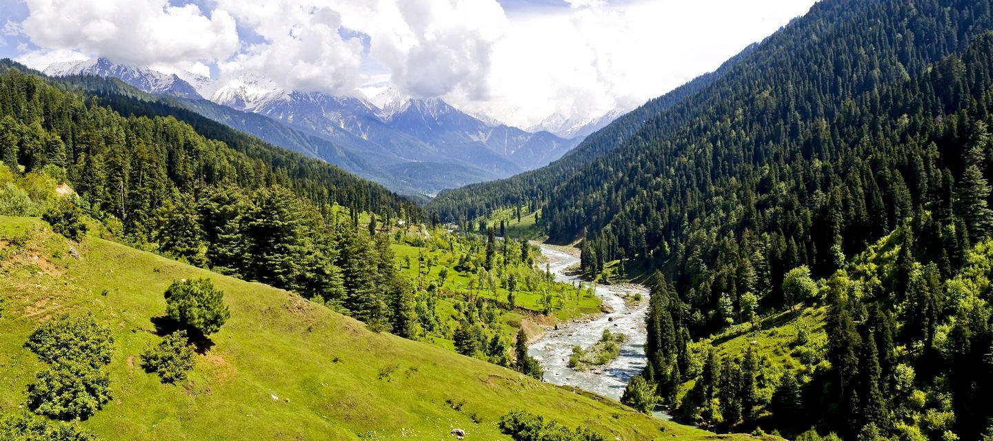 Kashmir Tour Packages - Collection