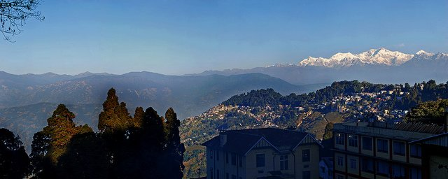 Darjeeling Tour - Collection