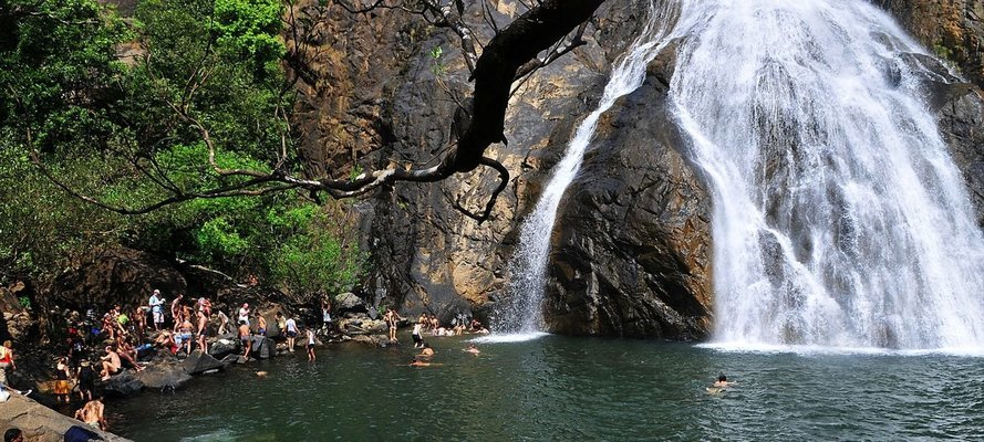Dudhsagar Waterfall Goa Trip on Private Basis - Tour