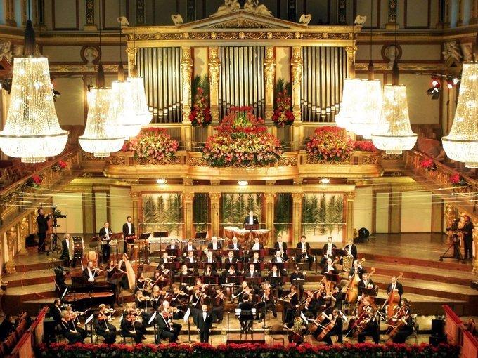 Vienna Residence Orchestra, Sightseeing in Vienna - Tour