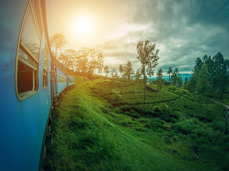 Amazing Sri Lanka Tour - Tour