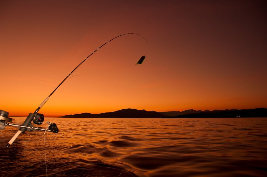 Bottom Fishing Tickets in Goa - Tour