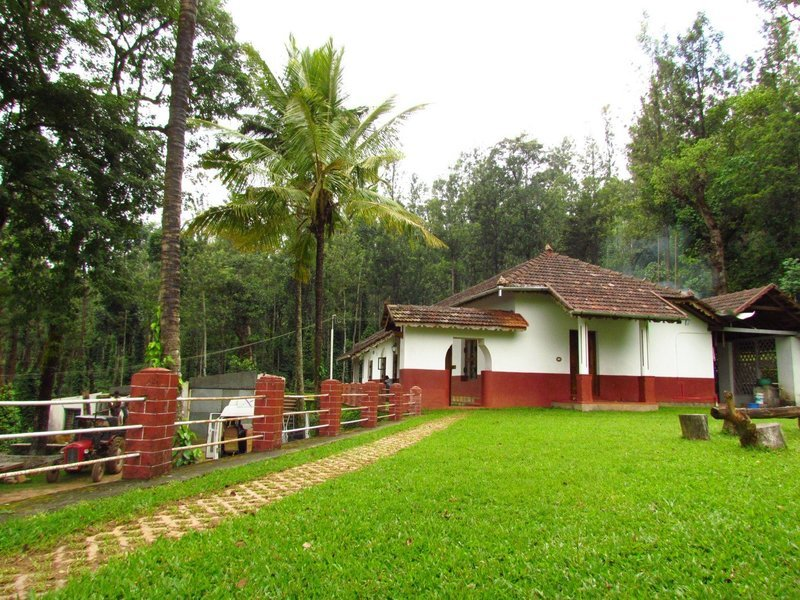 Coffee Time @ Chikmagalur - Tour