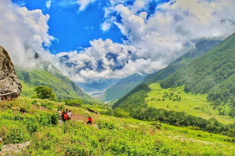 Valley of flowers Tickets in Uttarakhand - Tour