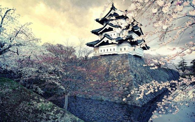 Explore Nagoya's Castle, Gardens and More! - Tour