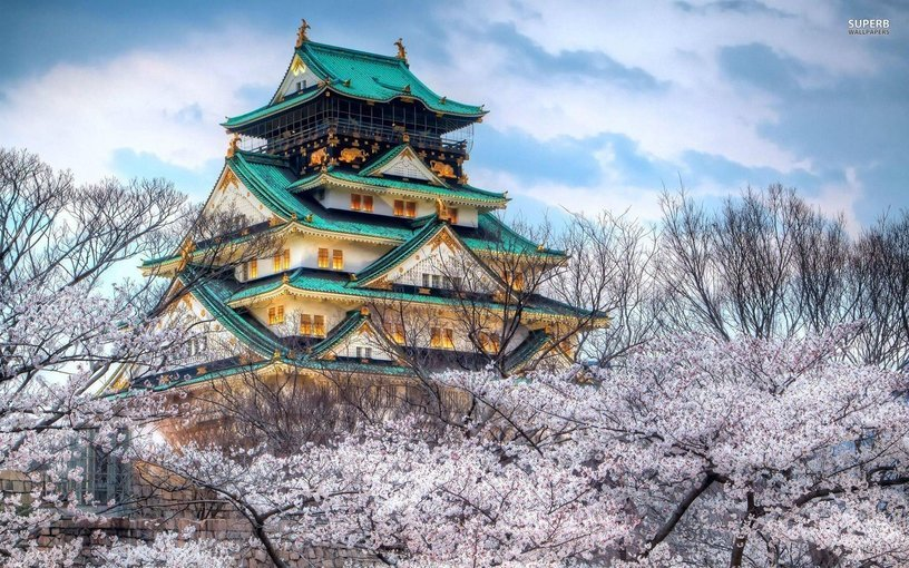 Private Car Full-Day Osaka Temples, Gardens & Kofun Tombs Tour - Tour