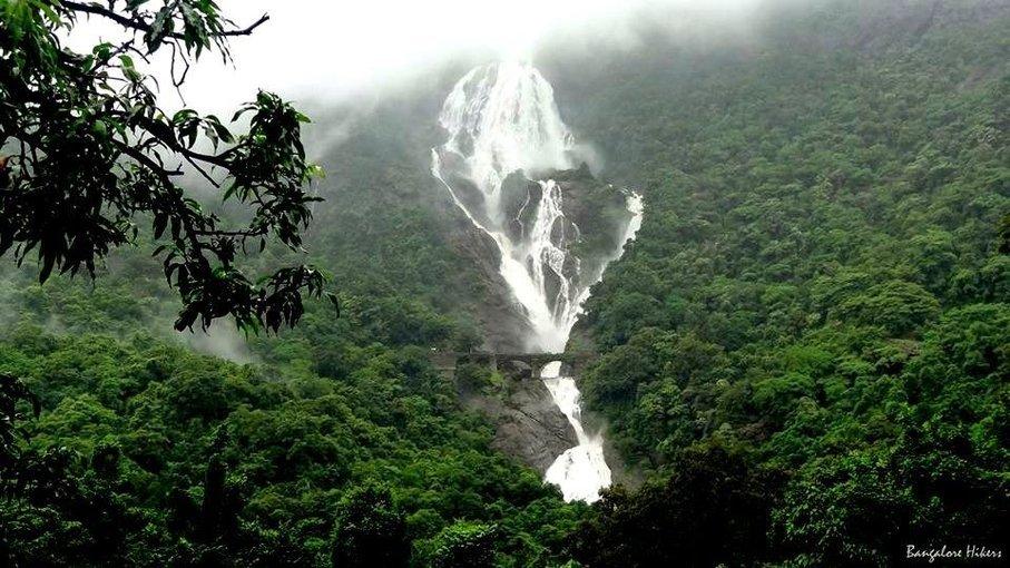 Dudhsagar Waterfall Trek - Tour