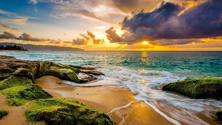 Best of Hawaii - Tour