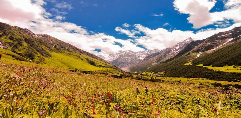 Valley of Flowers With Hemkund Trek - Tour