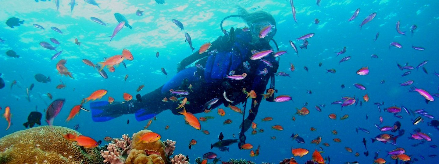 Discovery Scuba In Pattaya - Tour