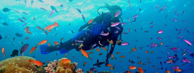 Discovery Scuba In Pattaya - Tour