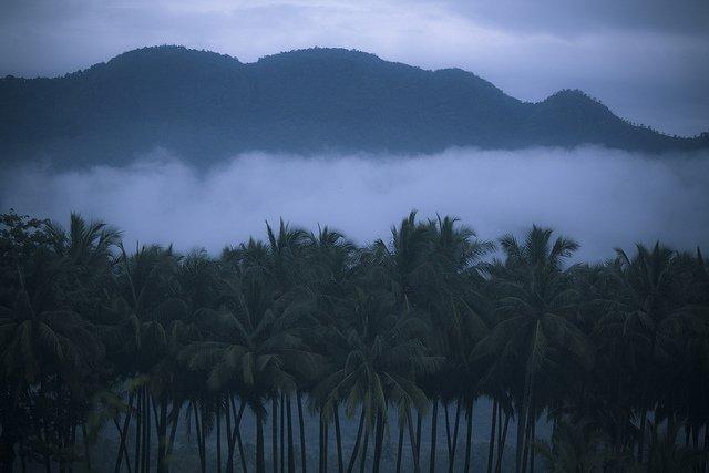 Kerala Trip 4N/5D - Tour