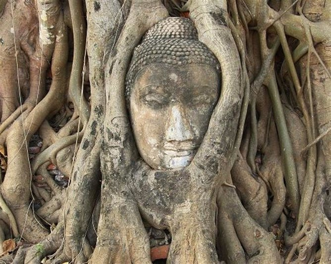 Ayutthaya by road tour - Tour