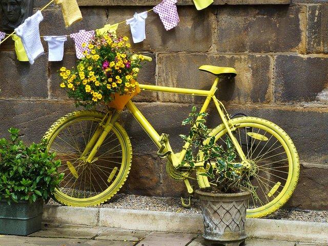Cycle Tour - Tour