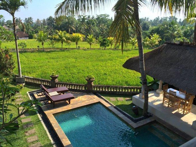 Yoga at Wapa Di Ume Ubud Tickets in Bali - Tour