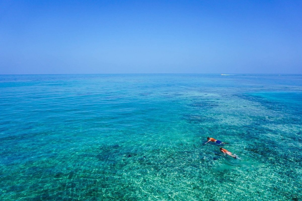 Snorkeling in Goa - Collection