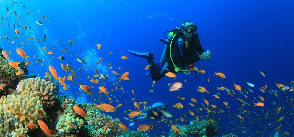 Combo of Scuba diving and Water sports - Tour