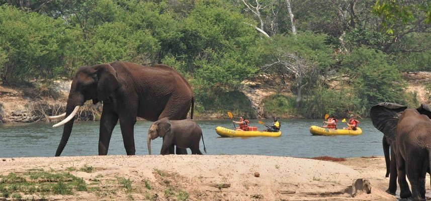 Victoria Falls Adventure Combos - Tour