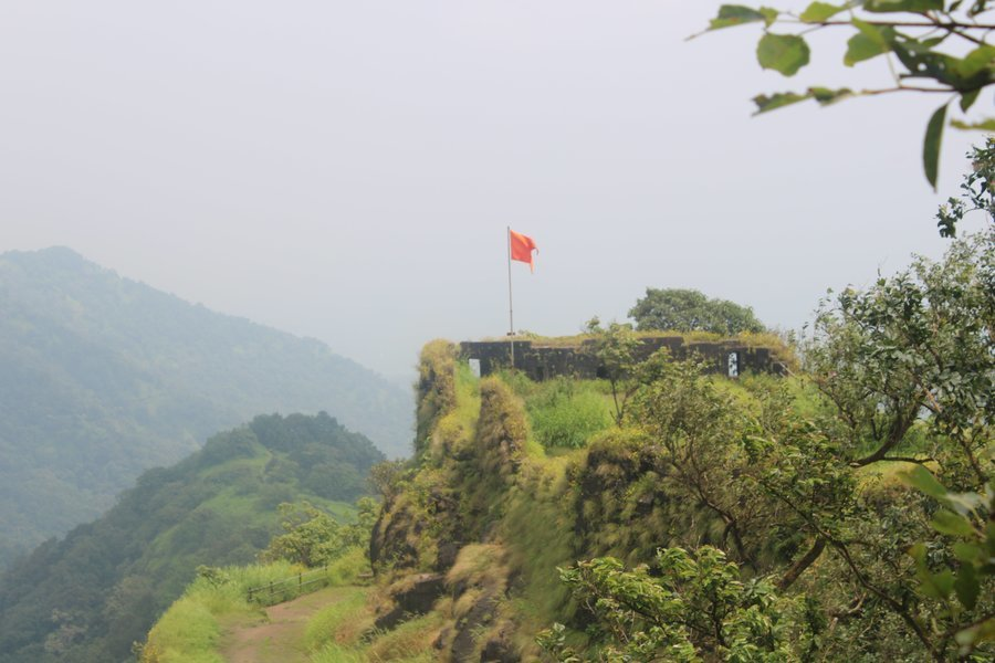 karnala Fort & Bird Sanctuary Tour - Tour