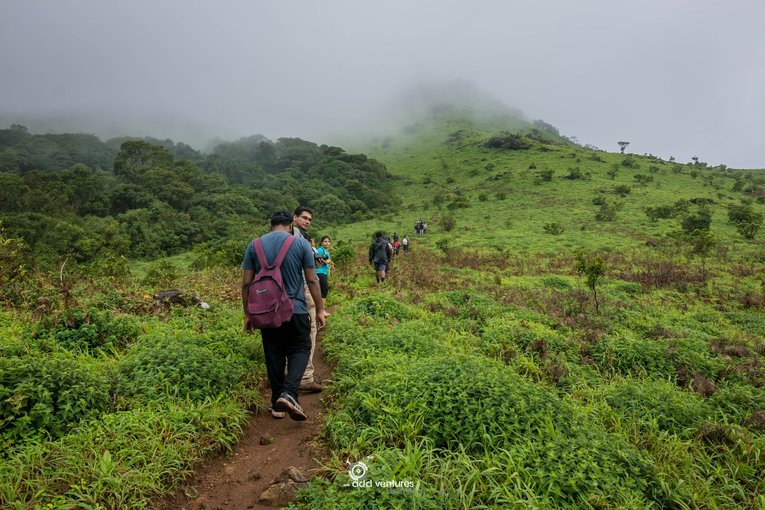 Tadiandamol Trek - Tour