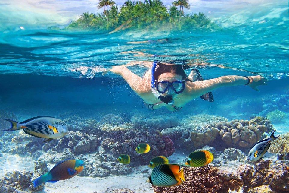 Phuket Cycling, Wildlife And Coral Tour - Tour