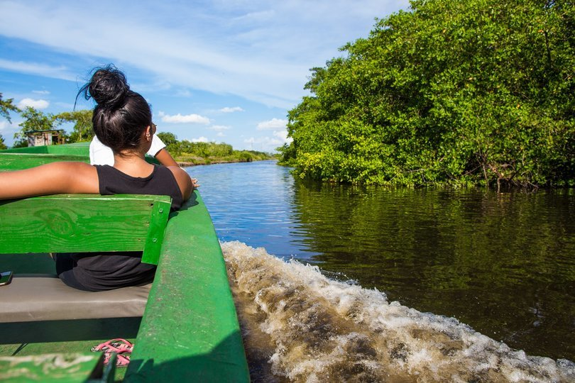 Bird Tour - ASA Wright & Caroni Swamp - Tour
