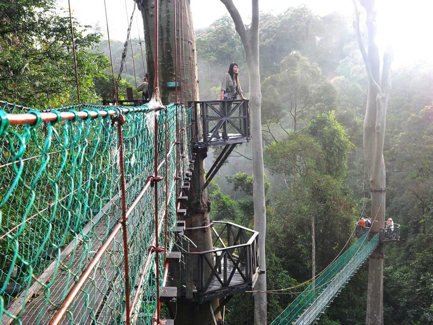 Culture, Nature, Wildlife of Sabah and Danum Valley - Tour