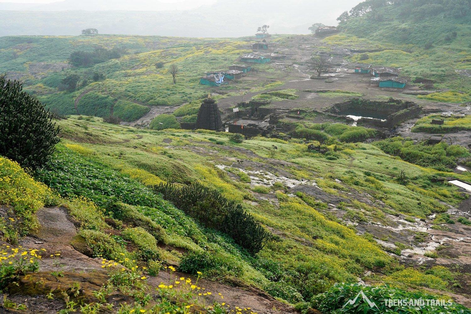 Harishchandragad-Camping