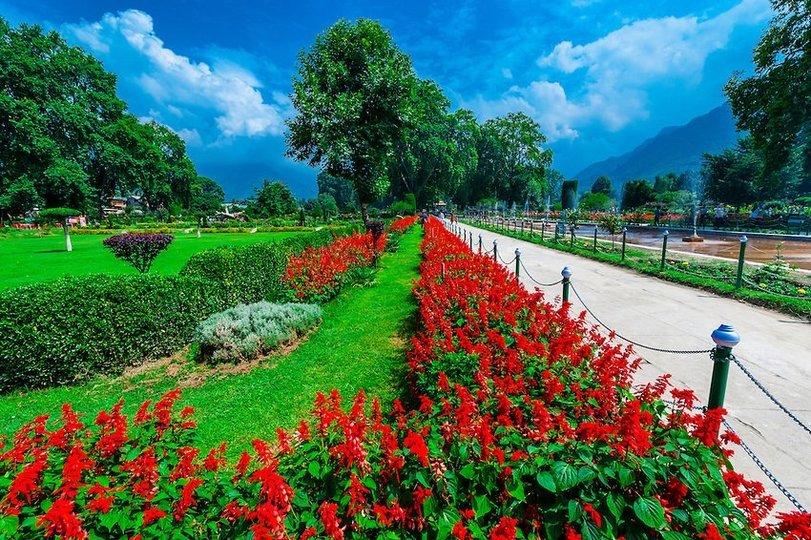 Best Of Kashmir - Tour