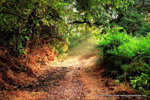 Nagla Block Photography Walk and Nature trail - Tour