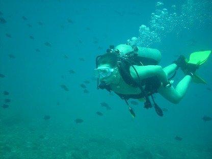 Scuba Diving at Netrani Island with Murudeshwar Sightseeing - Tour