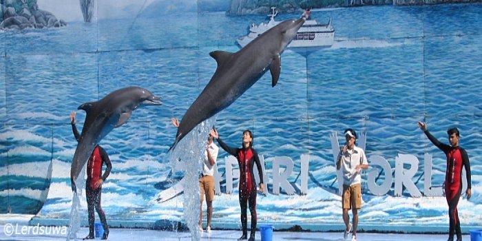 Safari World Bangkok Tickets Flat 25% Off - Tour