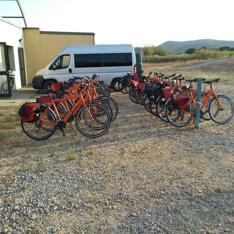 Bike Rental - Collection