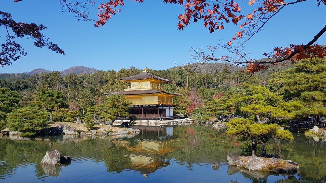 Kyoto Private Tour - Full Day - Tour
