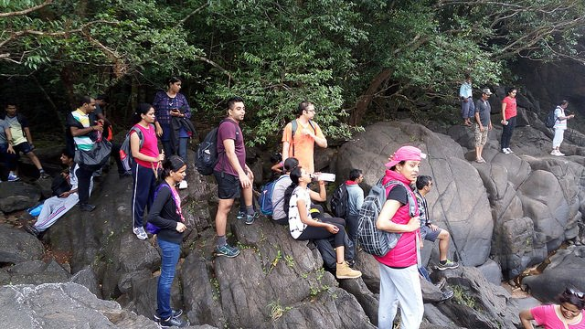 Dudhsagar Waterfall trip in Goa - Tour
