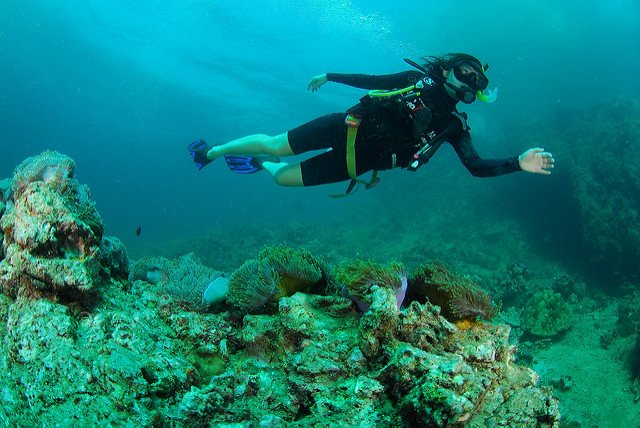 Cheapest Scuba Diving in Goa that Will Have You Surprised - Collection