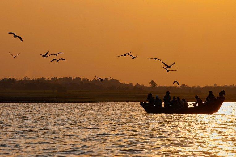 Bhigwan-Kumbhargaon Beginners Birdwatching Tour - Tour