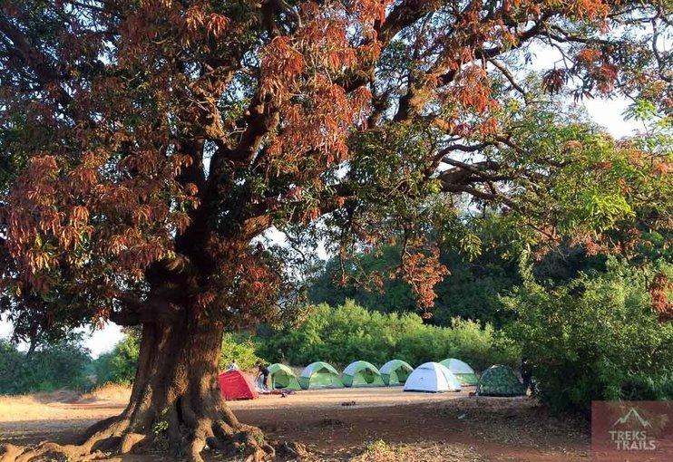 New Year Camping at Rajmachi - Tour