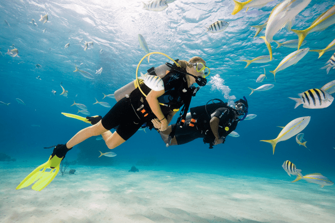 Scuba Dive | Grand Island - Collection