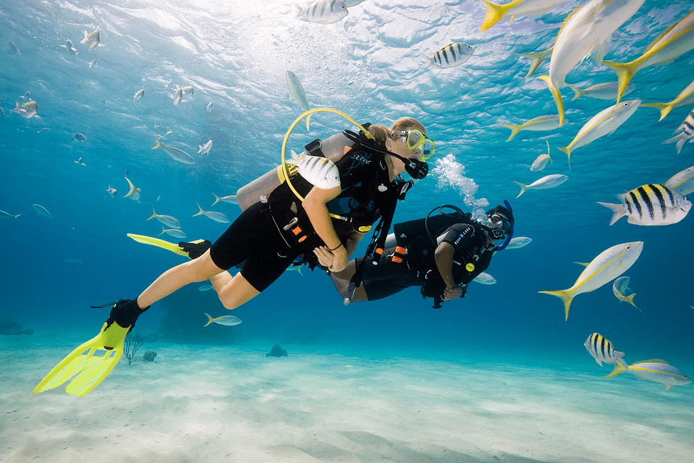 Scuba Packages in Goa | Grande Island - Collection