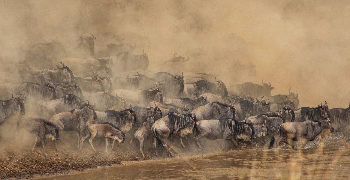 Kenyan Adventure - Tour