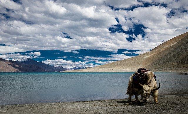 Srinagar - Turtuk - Manali - Tour